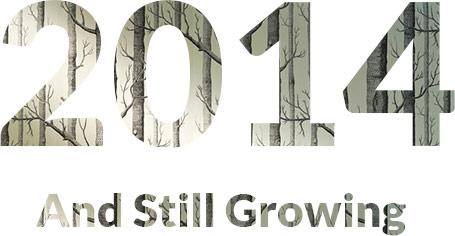 2014 year image