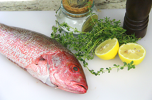 Big Green Egg Grilled Red Snapper Recipe